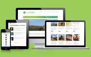 Goodfellow_website_showcase